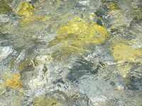 Schilderij met stromend water (detail)